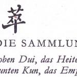 45 – TSUI – DIE SAMMLUNG