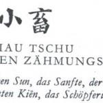 9. SIAU TSCHU – DES KLEINEN ZAEHMUNGSKRAFT
